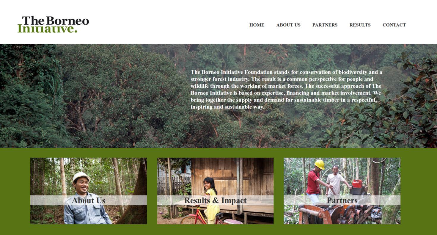 website TBI